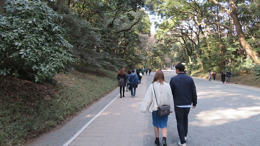 Meiji Shrine Path