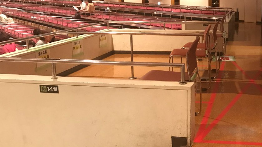 Accessible seating at sumo tournament