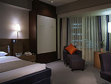 ana-intercontinental-tokyo-accessible-room-29th_floor_2