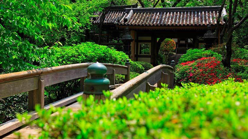 The Prince Sakura Tower Tokyo - Garden