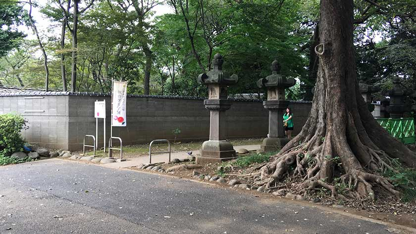 Accessible entrance to left of Toshogu's main entrance