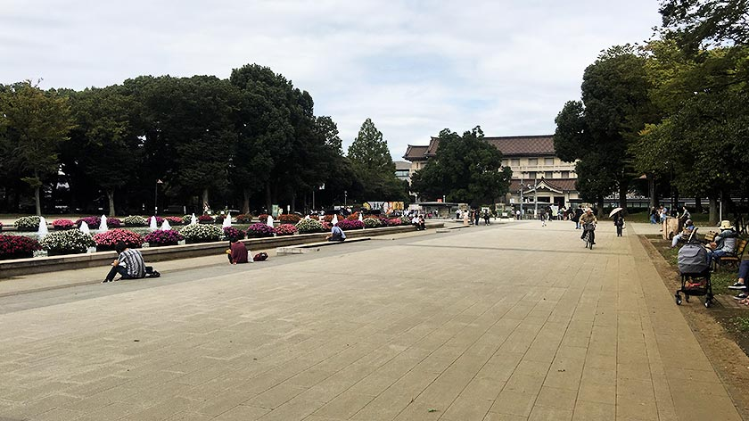Ueno Park – Accessibility Review