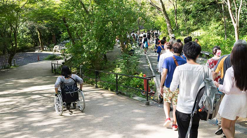 Fork in accessible path at Kiyomizu-dera
