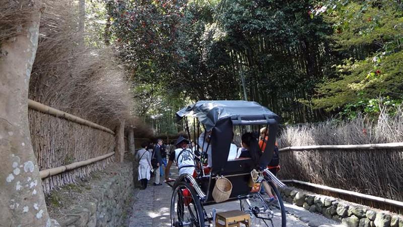 arashiyama-bamboo-grove-jinrikisha