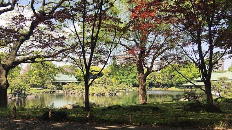 kiyosumi-gardens-feature