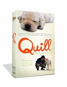 DVD cover of Quill The Life of a Guide Dog
