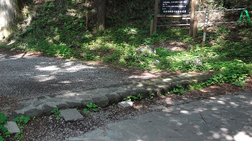 Step to cedar avenue in Hakone