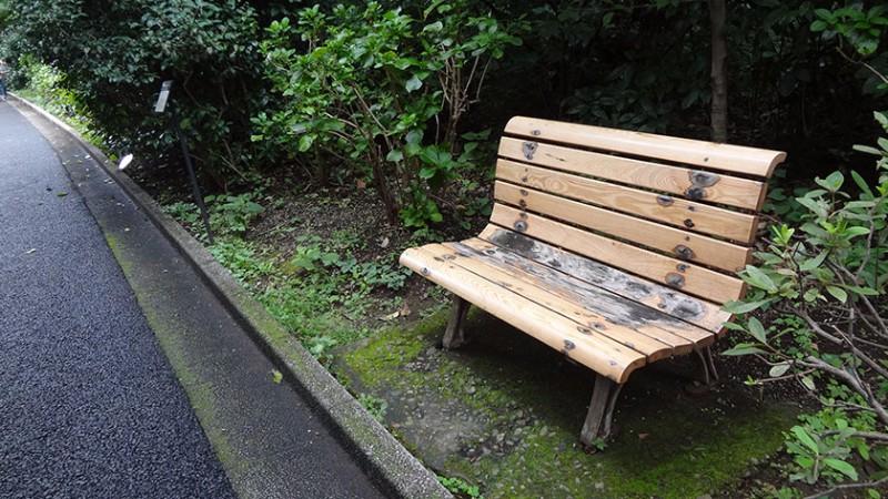shinjuku-gyoen-bench