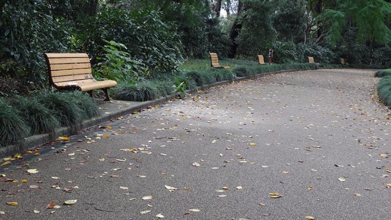 shinjuku-gyoen-benches