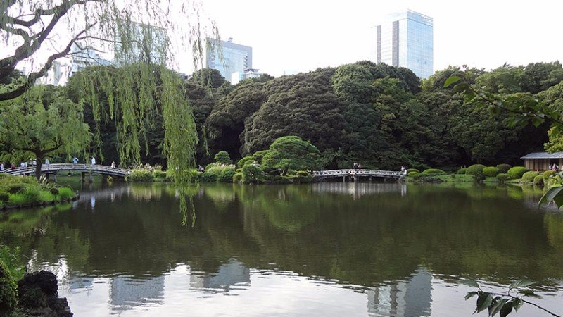 Shinjuku Gyoen – Accessibility Review