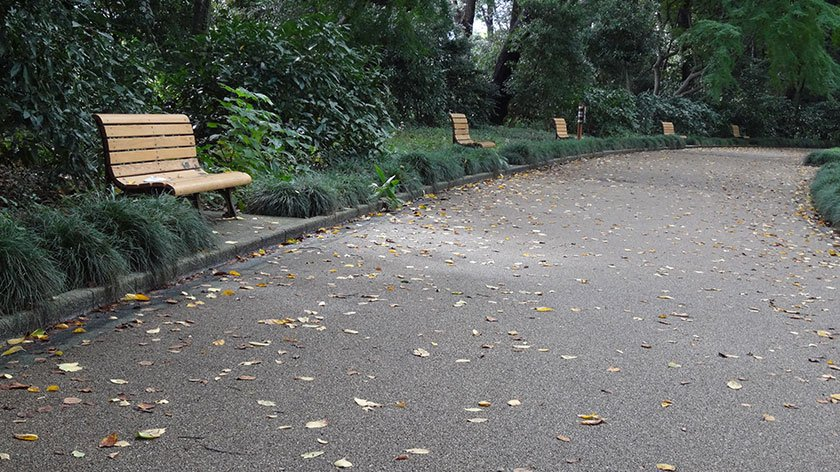 Shinjuku Gyoen path and benches
