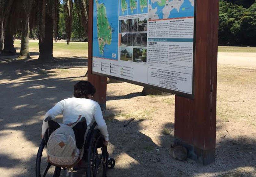 Bunny Island map
