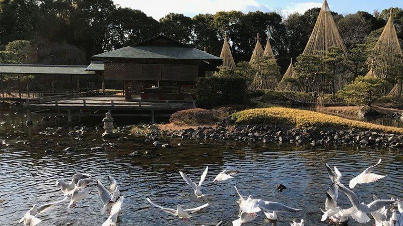 shirotori-garden-feature