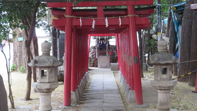 hanazono-shrine-inari