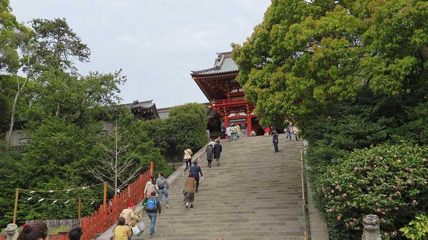 Stairs to main hall at Tsurugaoka Hachimangu
