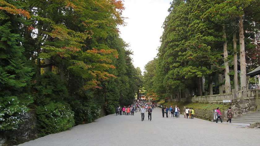Gravel Road to Nikko Toshogu Shrine