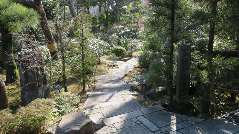 nezu-museum-garden-2