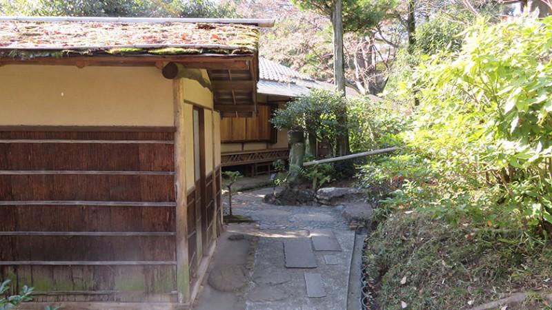 nezu-museum-garden-5