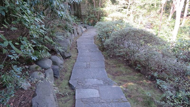 nezu-museum-garden-6