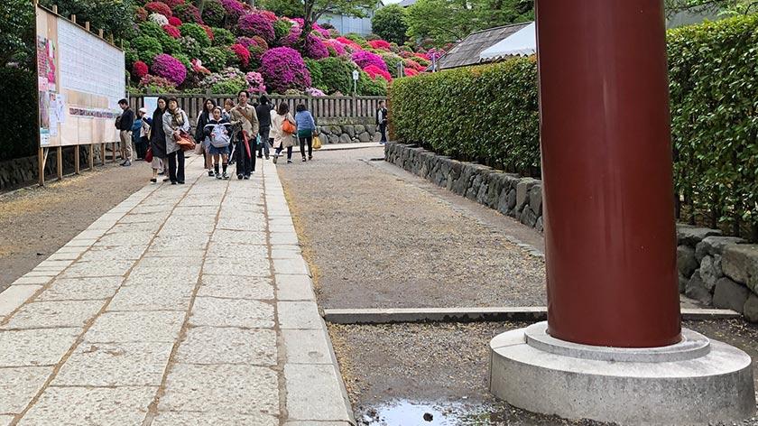 Path at Nezu Jinja